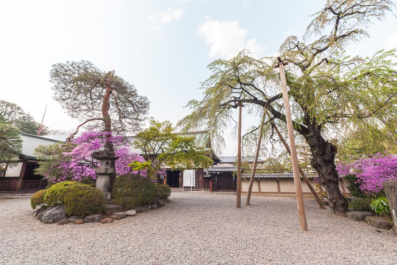 Japan-in-Berlin-Zartrosa-Lichtblau-07-Kawagoe-IMG_5207
